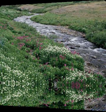 pt_creek